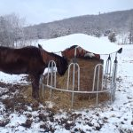 Protecting hay from snow